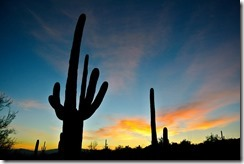 Photo Credit http://pixabay.com/en/arizona-sunrise-nature-landscape-83770/