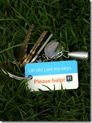 lost-keys-in-grass